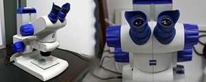 Stemi DV4体式显微镜(文件制作方法鉴定)